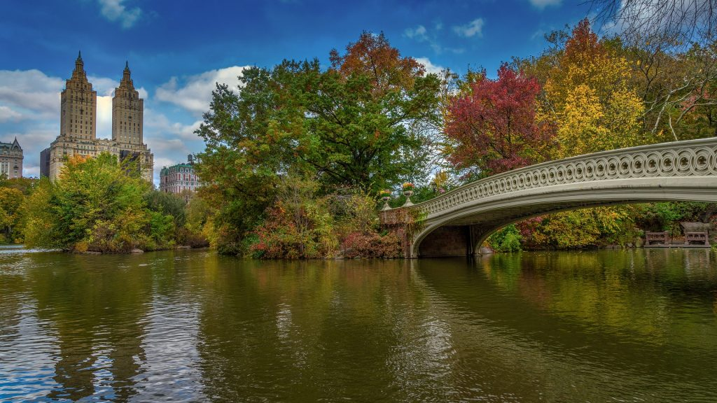 bow bridge in central park in new york