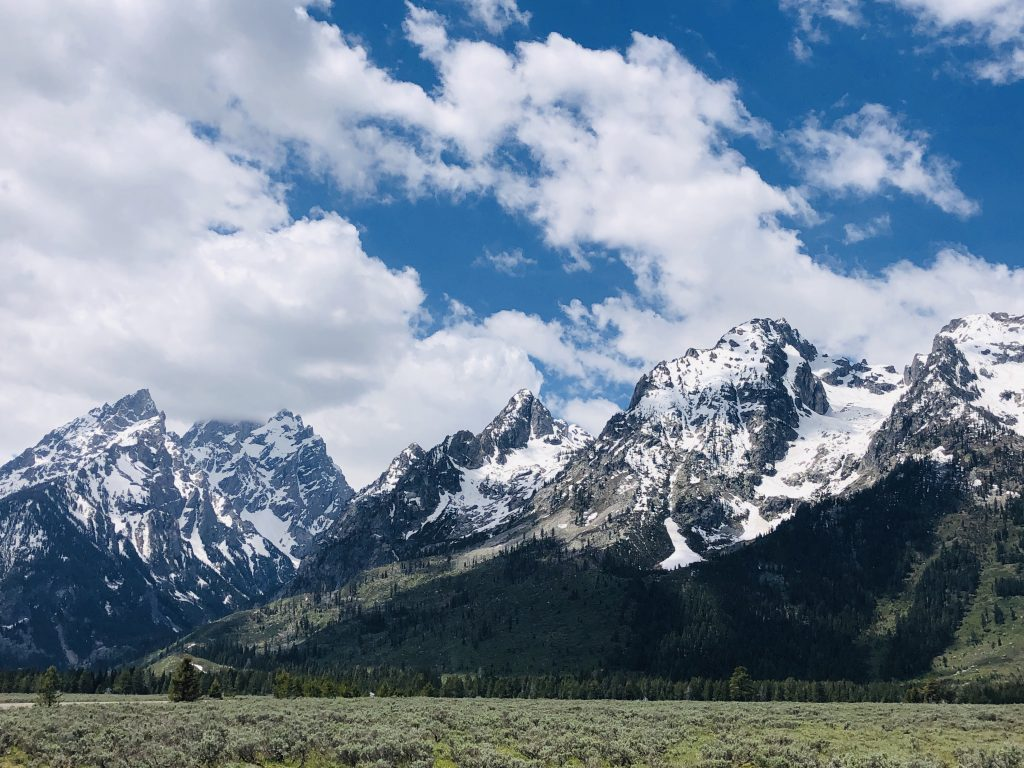 Cathedral Group in Grand Teton National Park