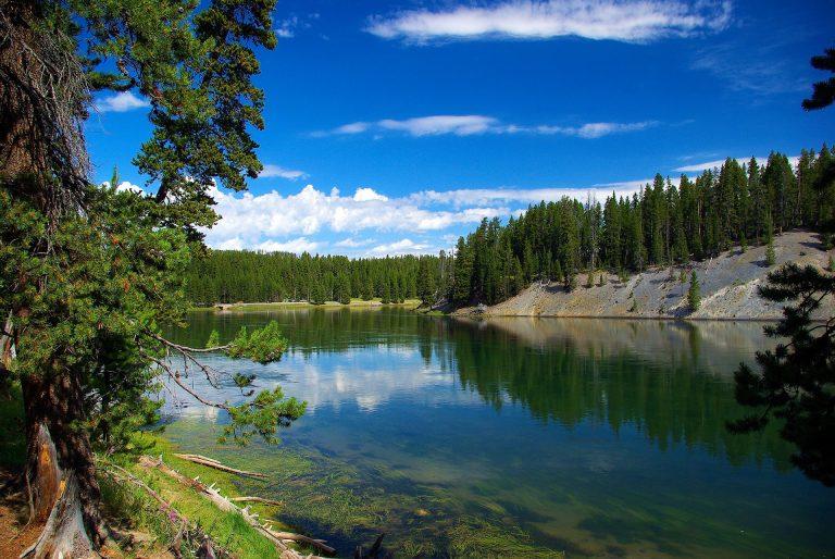 river at Yellowstone National Park