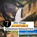 7 Amazing Things to See in Yellowstone