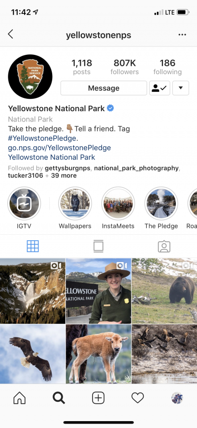 Yellowstone National Park Instagram